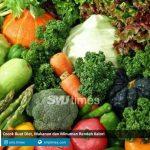 cocok buat diet makanan dan minuman rendah kalori smjtimes