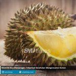 memiliki bau menyengat 7 manfaat kesehatan mengonsumsi durian smjtimes