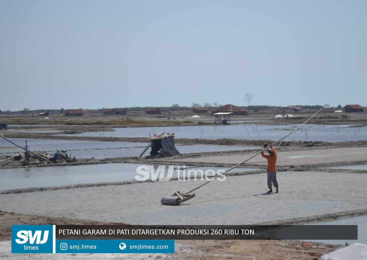 petani garam di pati ditargetkan produksi 260 ribu ton