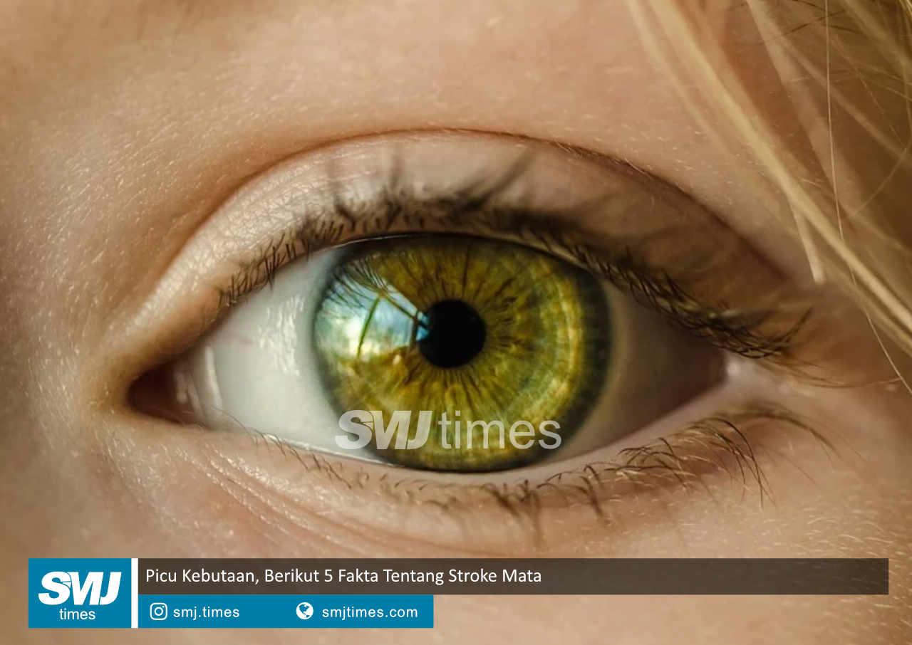 picu kebutaan berikut 5 fakta tentang stroke mata
