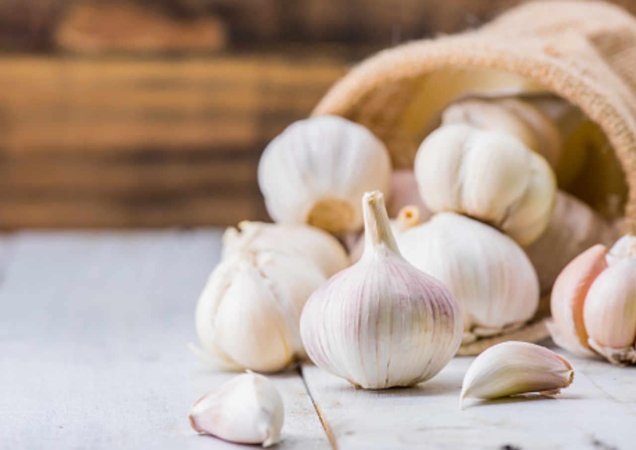 menurunkan risiko kanker ini manfaat bawang putih