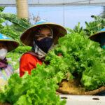 pemkab kudus dorong pengembangan produk unggulan lokal